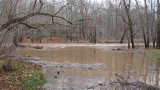 The Swollen Eno River Preview